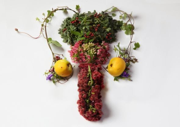 Camila Sitarama Carlow sculpture photography plants flowers arranged human body organs Testicles
