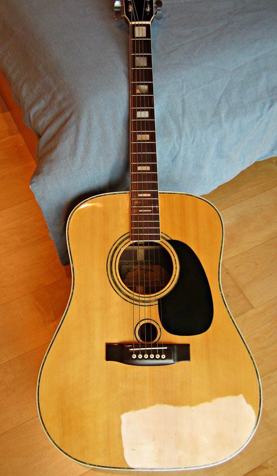 Suzuki Co  String Guitar