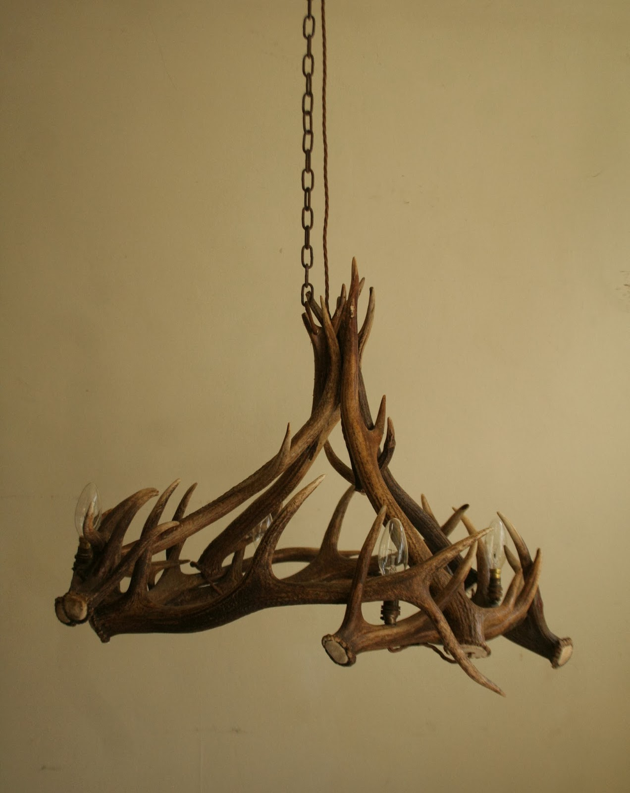 Antler chandeliers no21 lime washed red deer antlers arubaitofo Images