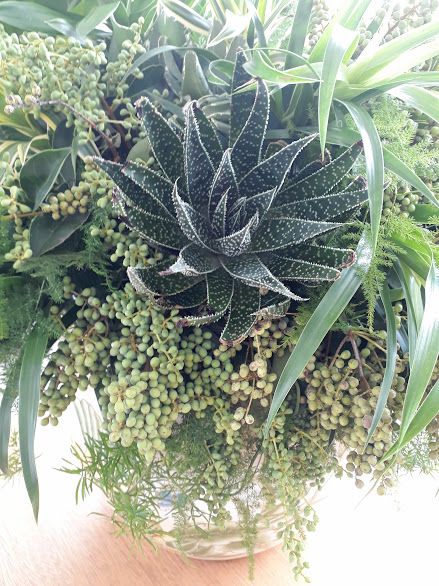Arranjol folhagens /green foliage arrangement