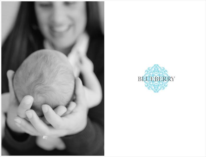 san jose south bay newborn family portrait photography