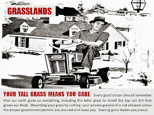 EPA Says Don't Cut The Grass