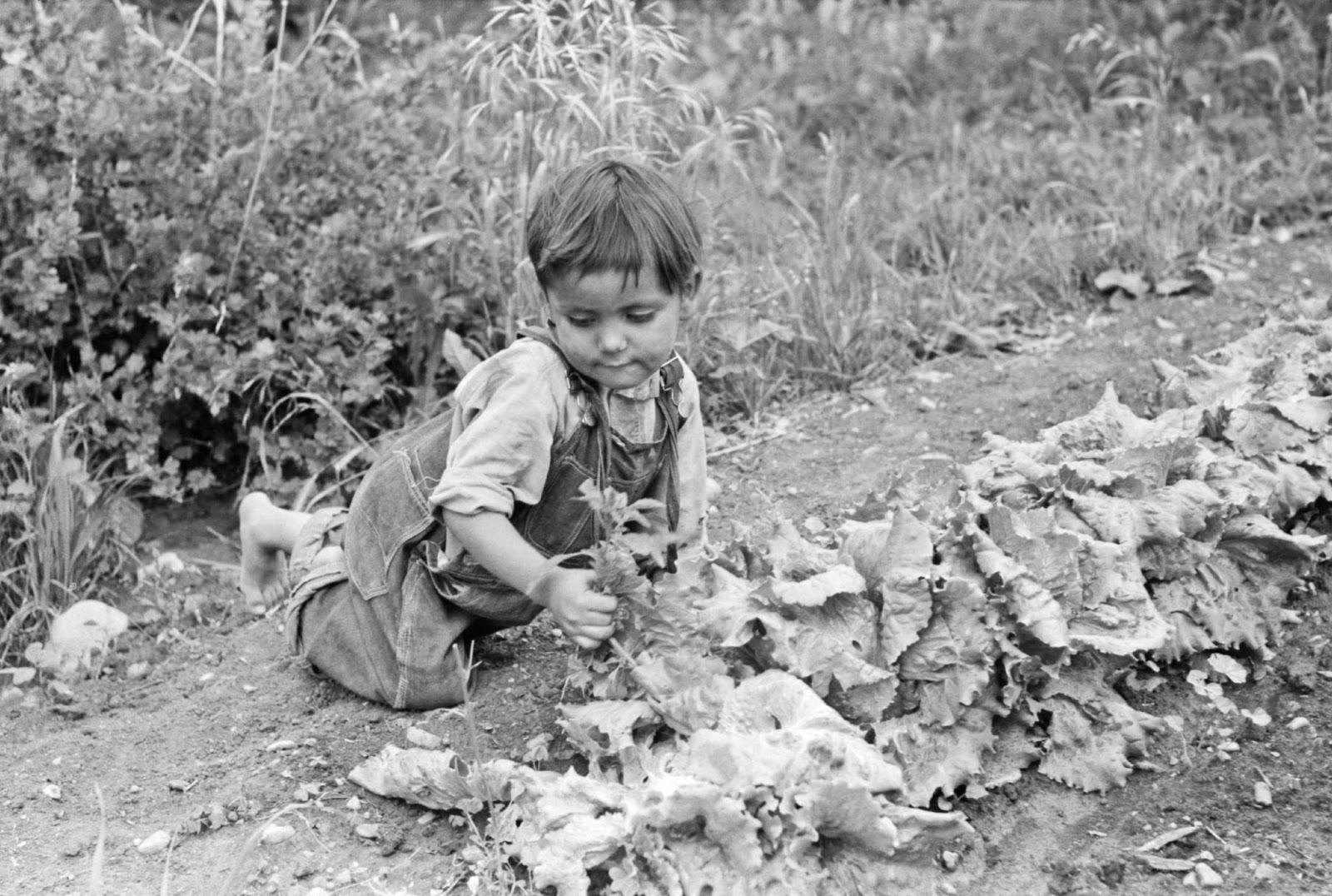 chamisal men Chamisals estate grown pinot noir er intens med opulente aromaer af sorte  kirsebær og blomme  i 1973 plantede chamisal som de første vinstokke i edna  valley,  email: info@osterbrovindk working days/hours: man - tors 9:00-17: 30.