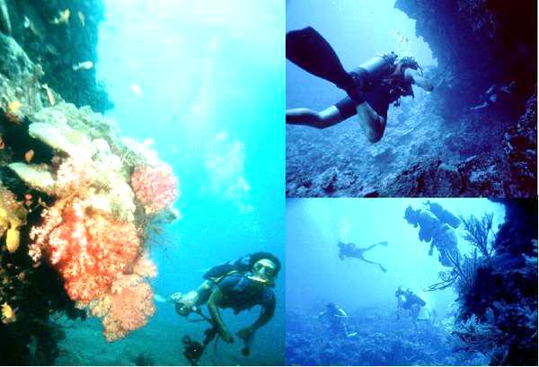 Pulau Pantara Kepulauan Seribu