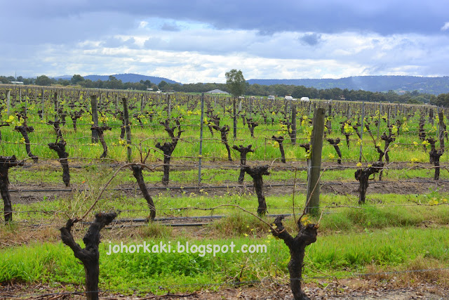 Swan-Valley-Food-Wine-Trail-Tour-Itinerary