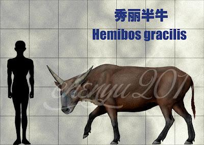 Hemibos