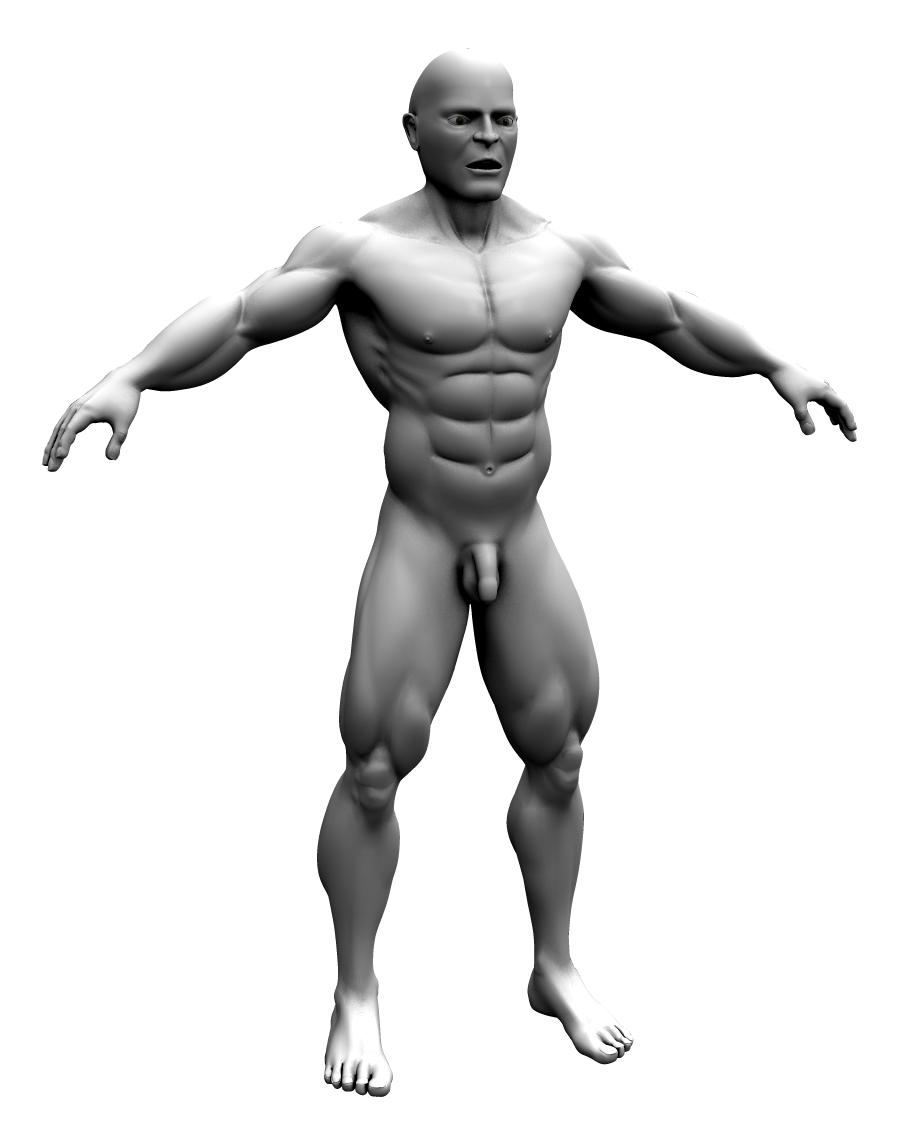 wings 3d development forum - my gallery (adh3d), Muscles