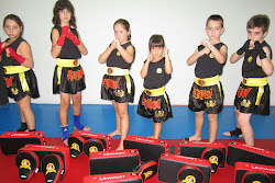 sanda chinese boxing