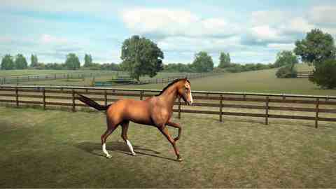 My Horse, iPhone Action Game Kids Gamess Free Download, iPhone Applications