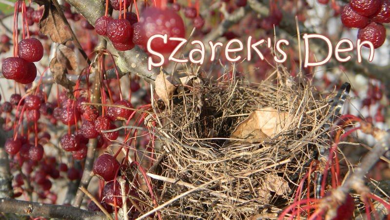 Szarek's Den