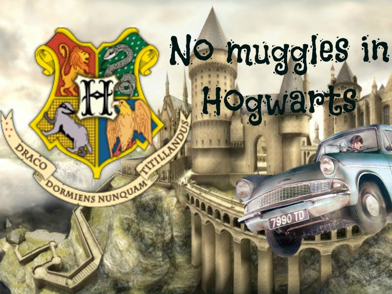 No Muggles in Hogwarts