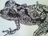 dotted ink of frog