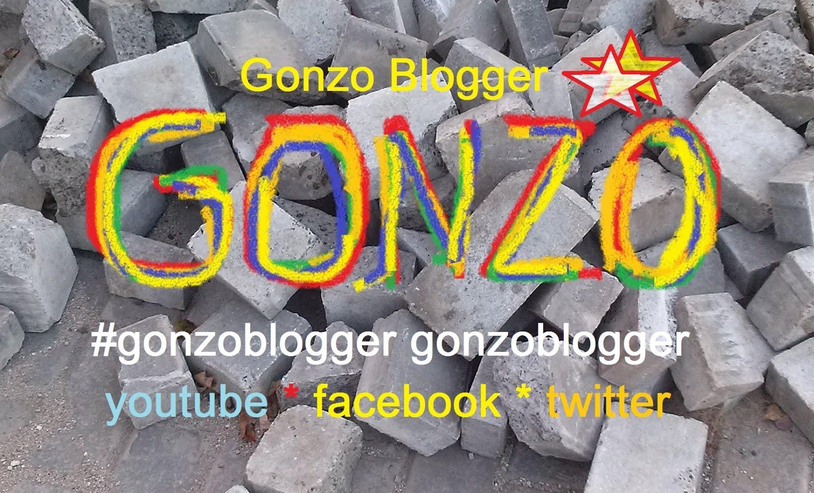 Gonzo Blogger