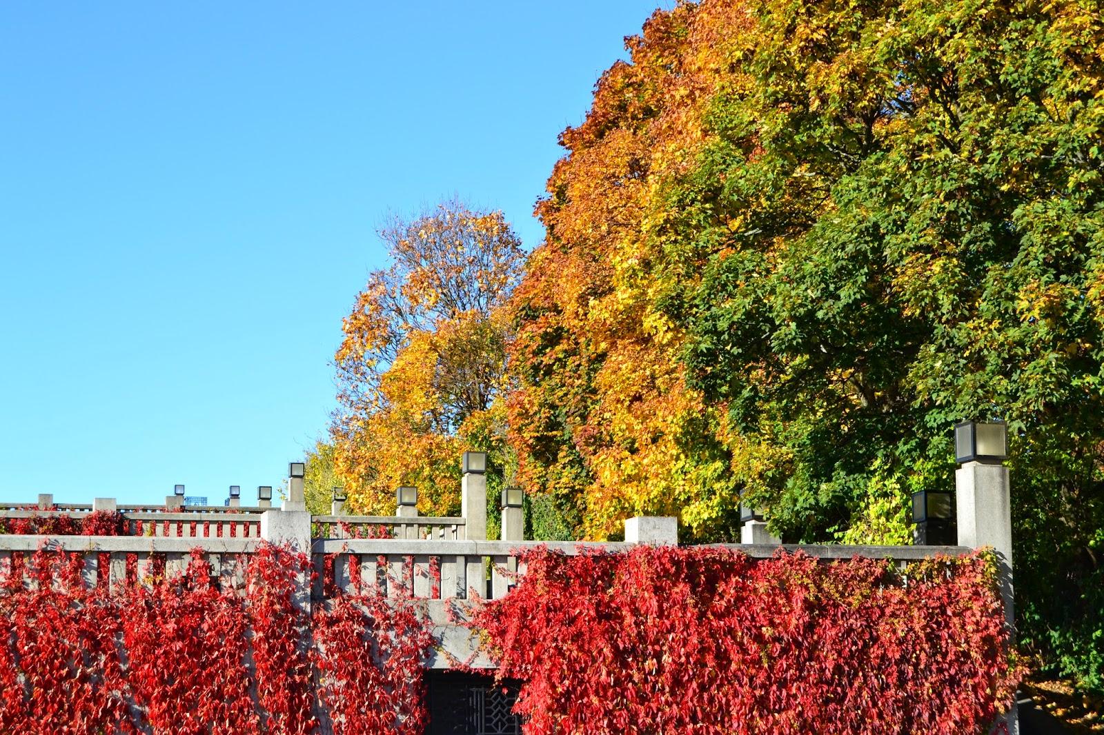 vigeland autumn colors