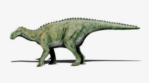 Iguanodon (Iguanodonte) Animal con i