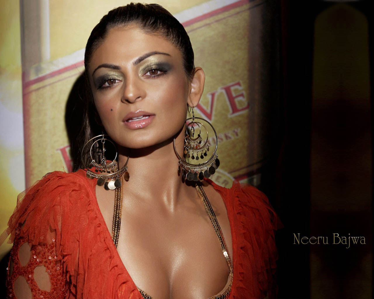 http://2.bp.blogspot.com/-aI6tyiAqiRg/TV0Z3YonLSI/AAAAAAAAIQ8/bJ0s9mArVMw/s1600/neeru-bajwa-hot-photos.jpg