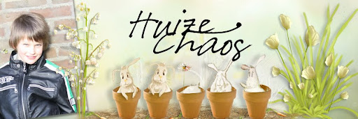 Huize Chaos