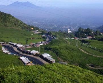 Kawasan Wisata Puncak Bogor terletak diantara antara kabupaten Bogor