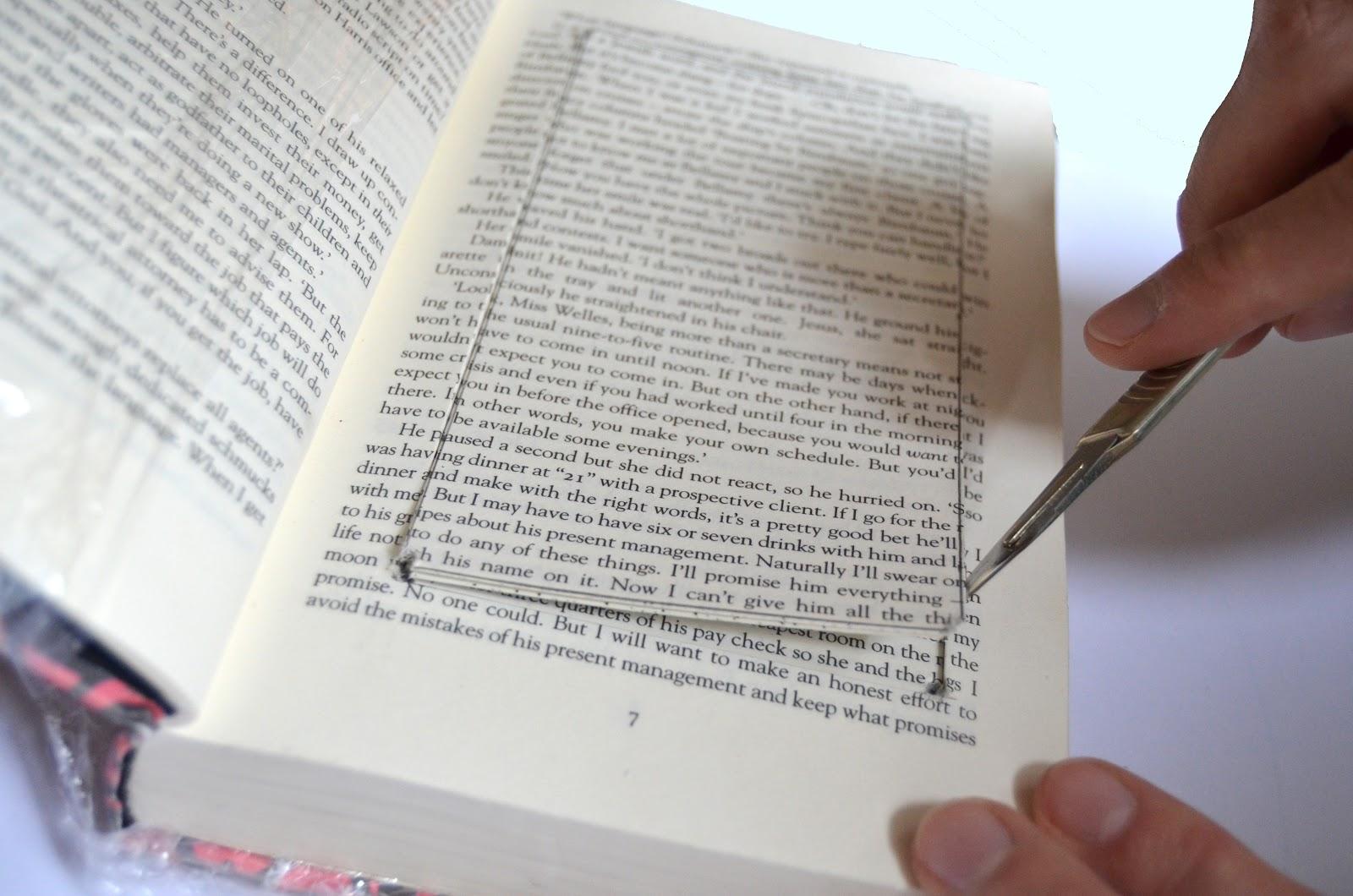 Book secret of america