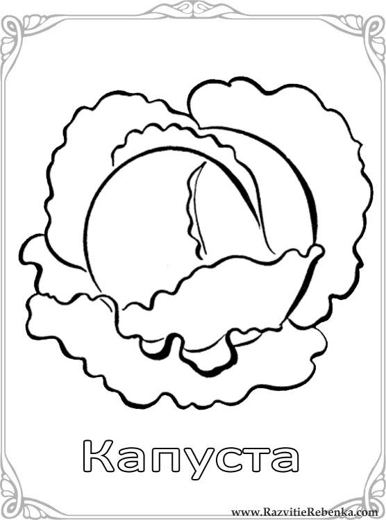 Джоанна басфорд раскраска