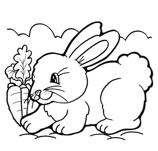 Imagenes de conejitos tiernos para dibujar - Imagui