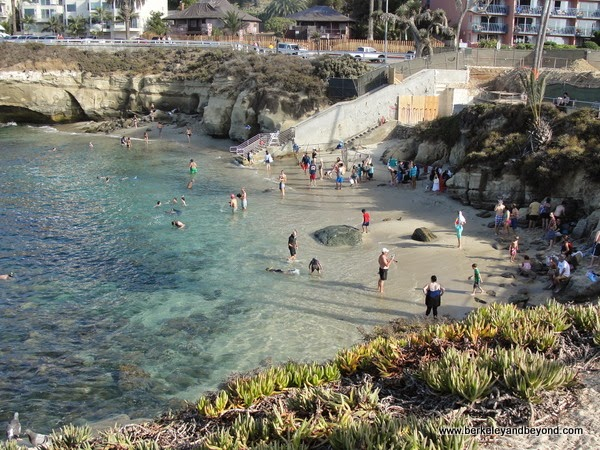 La Jolla Cove at Ellen Browning Scripps Park in La Jolla, California
