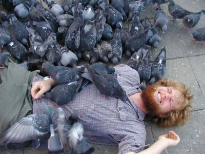 The Walking Dead appreciation thread - Page 5 Too_many_pigeons