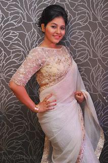 Anjali latest Glamorous pics in saree 019