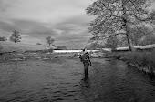 Baslowfisher's Picasa Photo Albums