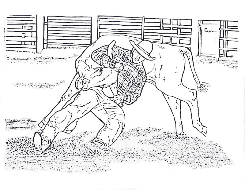 Steer Wrestling Color Page By Dancing Cowgirl Design title=