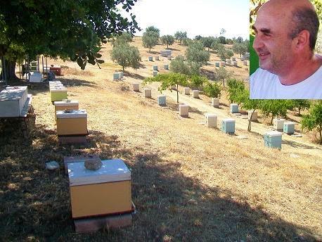 Μελισσοκομεία στο Κρανίδι από τον Μάκη Μπαϊρακτάρη