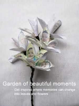 Garden of beautiful moments