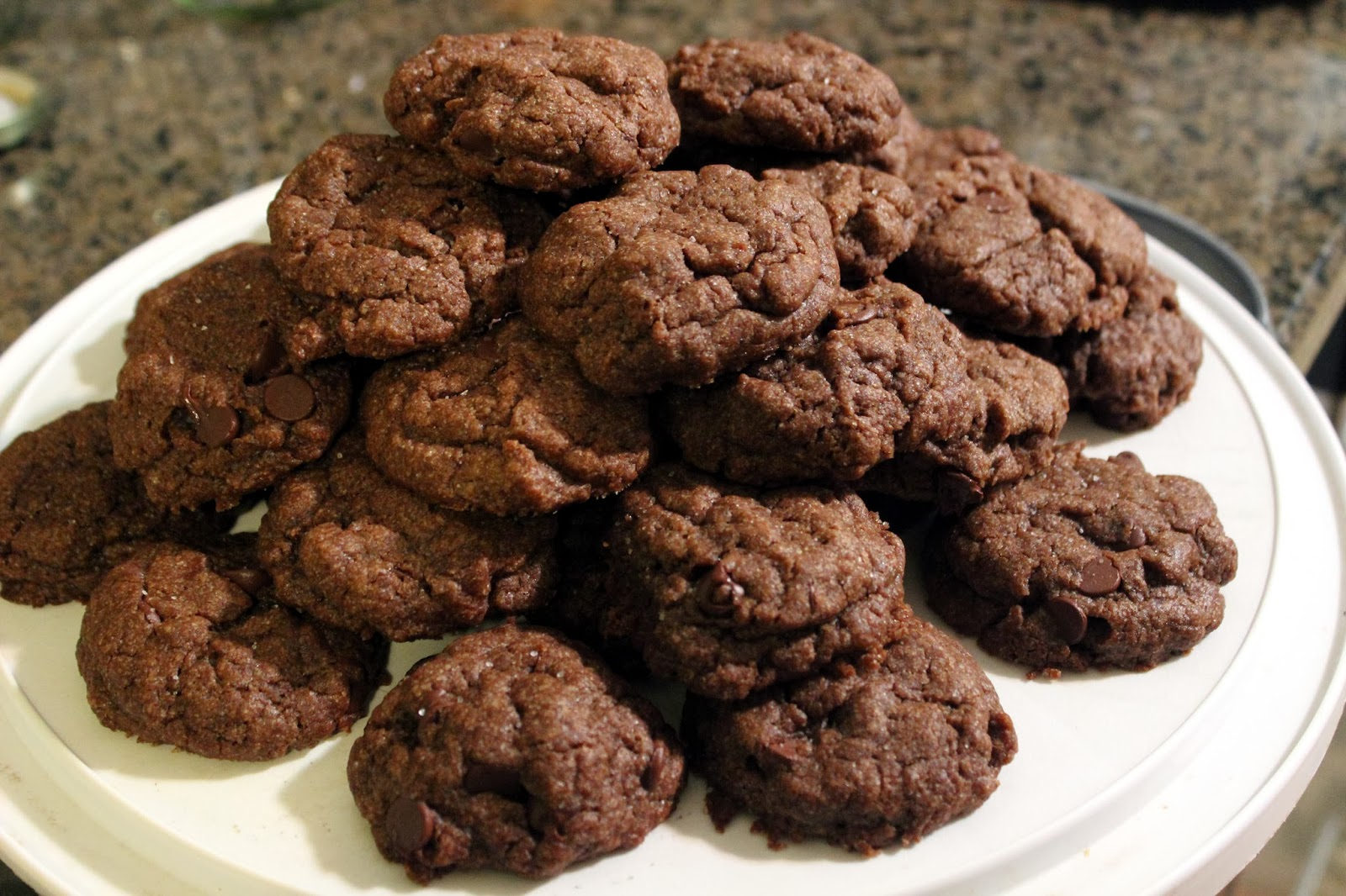 ... chip pudding cookies print these double chocolate chip pudding cookies