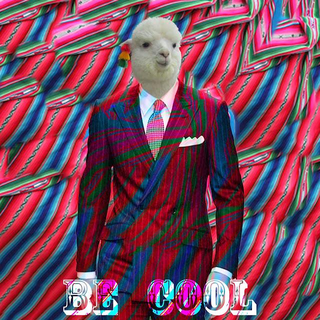 llama cool - ola ke ace