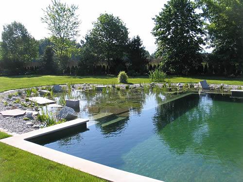 Carol Daemon: A casa sustentável é mais barata - parte 16 (piscinas ...