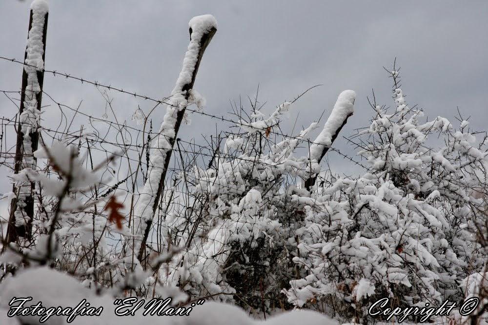 La nieve en invierno.