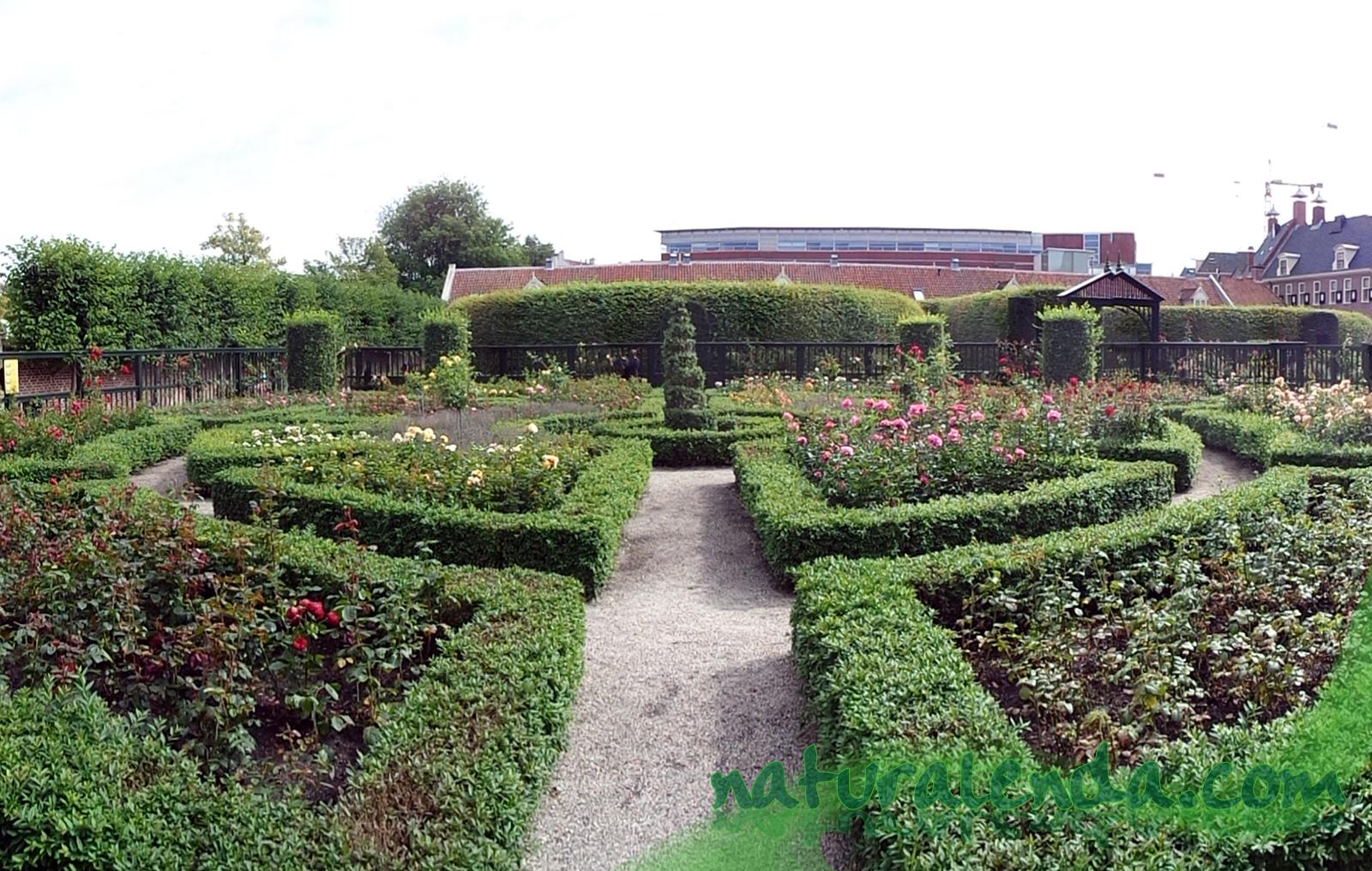 jardin renacentista Groningen