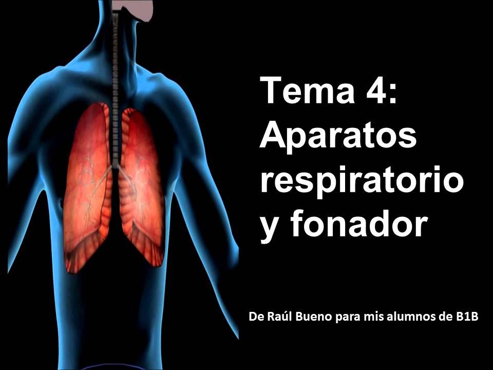El Bioblog de Raúl: Resumen aparatos respiratorio y fonador