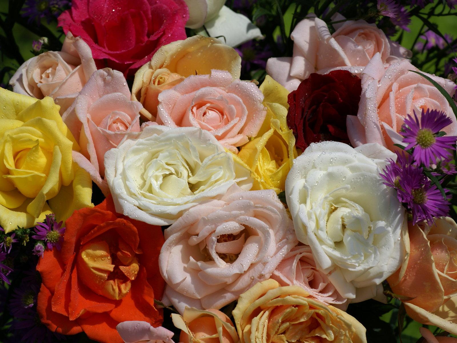 fotos de ramos de flores preciosas jardn de flores y poesas facebook - Fotos De Ramos De Flores Preciosas