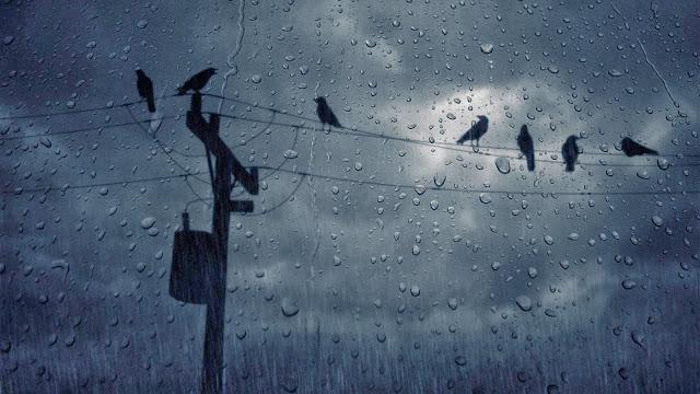 http://2.bp.blogspot.com/-aLhzcy7Eb8Q/UrGjmsNxIVI/AAAAAAAAAR8/Q04LmJndLXg/s1600/rain-wallpaper-3.jpg