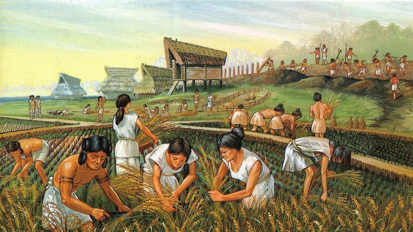 Kết quả hình ảnh cho cách mạng nông nghiệp