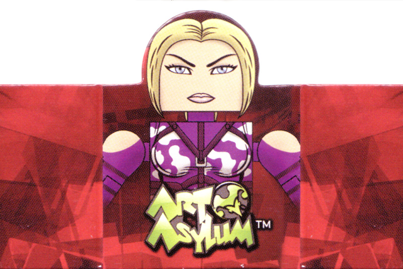 Street Fighter Tekken Figure Artwork