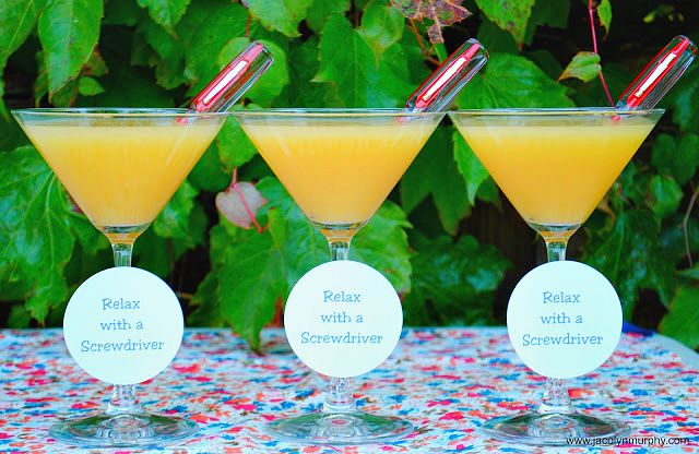 How to serve a Screwdriver Cocktail | www.jacolynmurphy.com