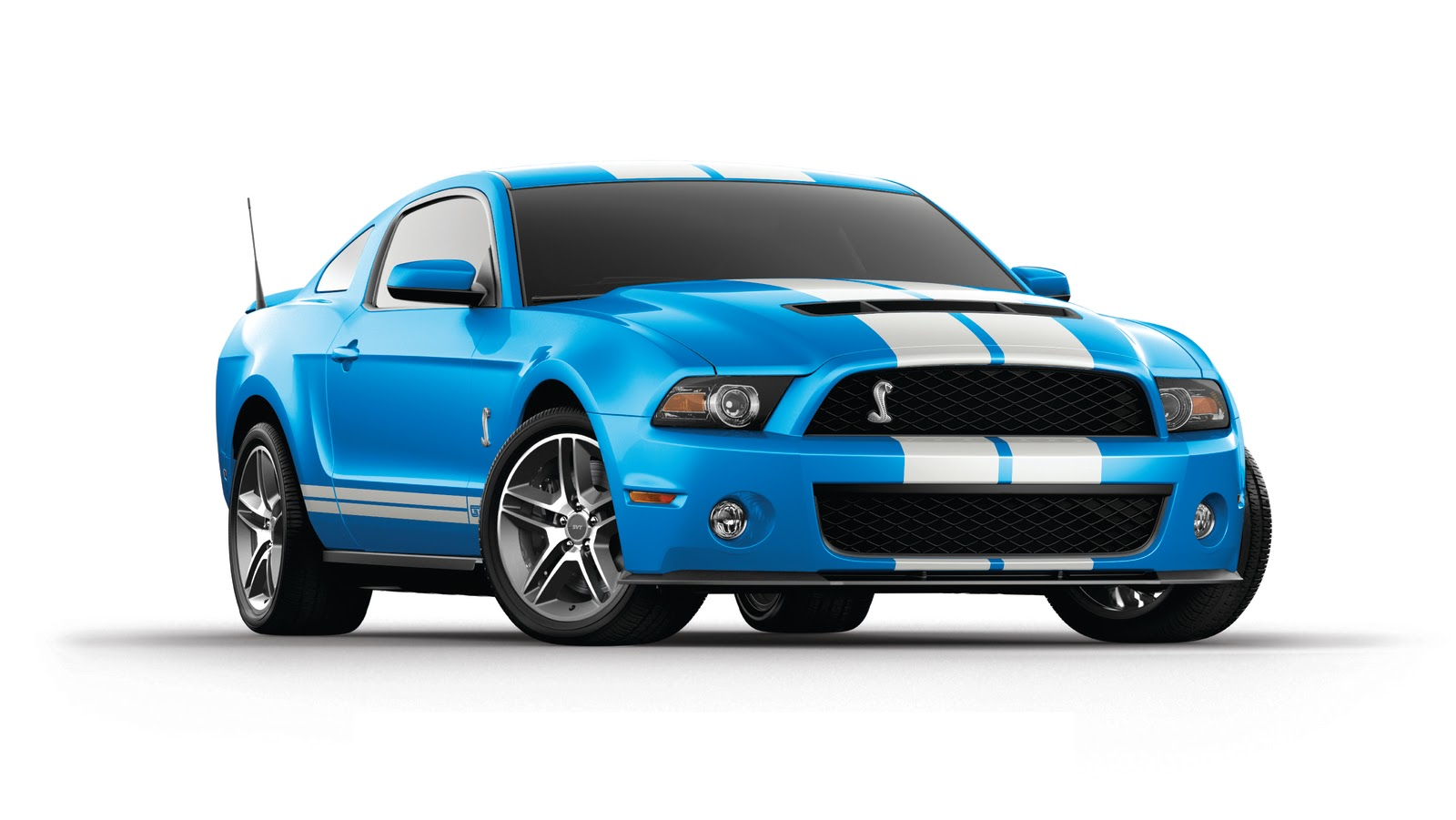 Sports Cars Ford Mustang Shelby Gt500 Super Snake Wallpaper