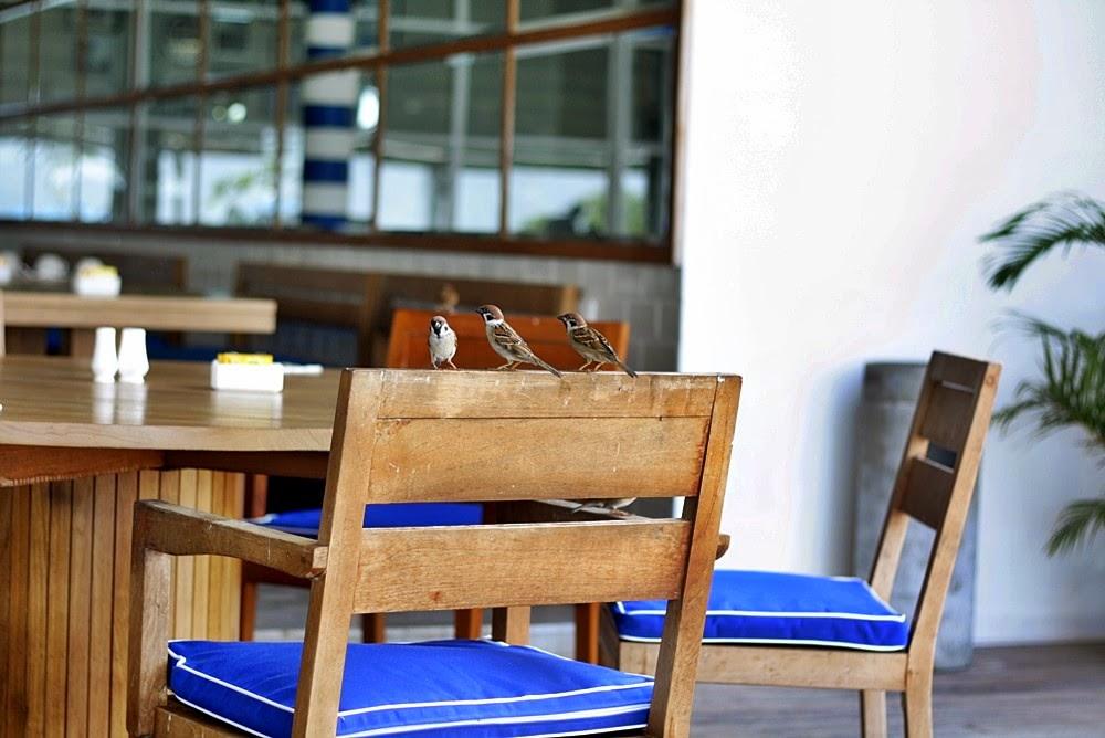MONTIGO RESORT'S BREAKFAST ON DELUXSHIONIST TRAVEL LUXURY BATAM SINGAPORE VILLA