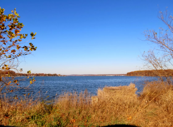 bohemia river