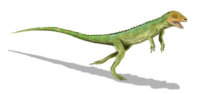 reptiles del permico Eudibamus
