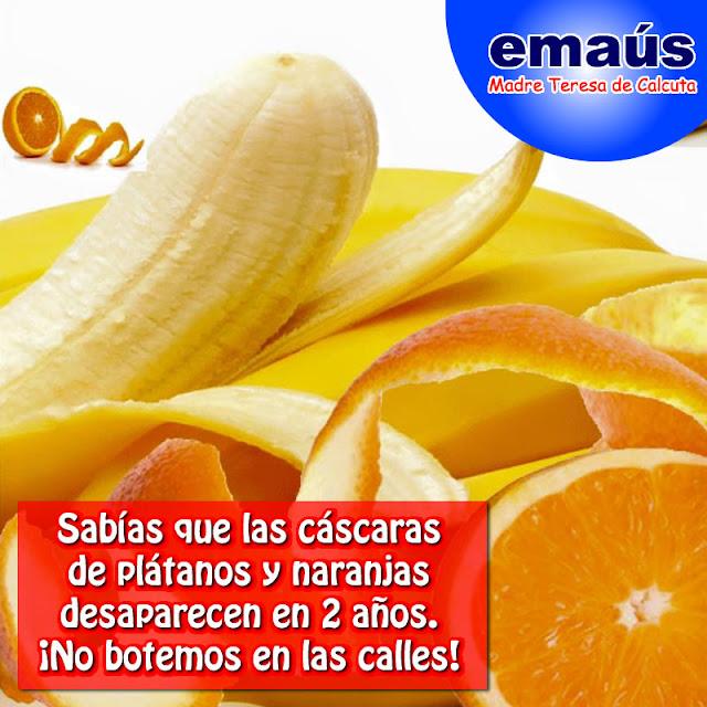 Las cáscaras de plátano y naranjas se descomponen en 2 años