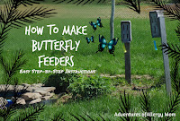 http://adventuresofallergymom.blogspot.ca/2015/05/easy-butterfly-feeders.html