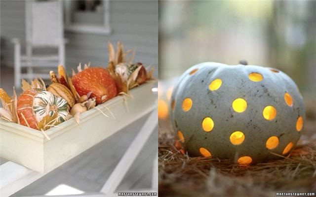 This display is so stylish love how different colored pumpkins have